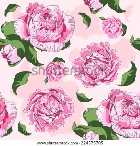 Peonies background  - stock vector