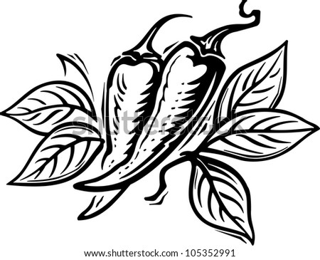 Pepper engraving picture. Vector illustration - stock vector