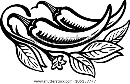 Pepper2 engrawing picture. Vector illustration - stock vector