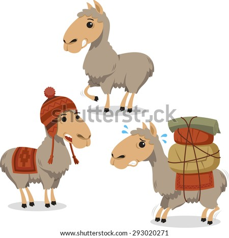 Peruvian Llama Lama with Knitted Clothes carrying luggage, vector illustration cartoon.  - stock vector