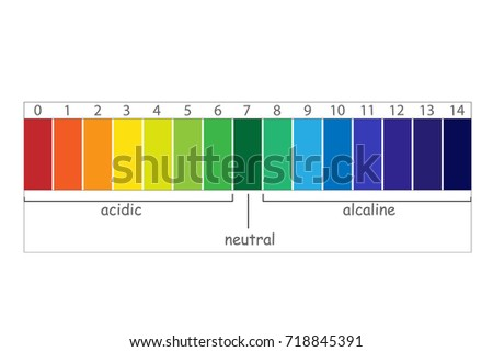 Ph Scale Value Chart Ph Alkaline Stock Vector