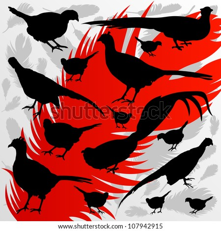 Pheasant bird detailed hunting season silhouettes illustration collection background vector - stock vector