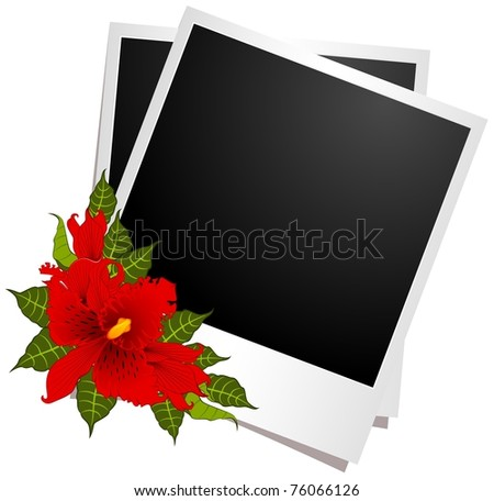 photo frames with flowers - stock vector