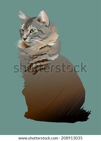 photo-realistic/ partial silhouette of young Maine Coon cat - stock vector