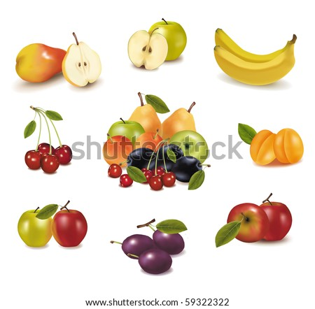 Photo-realistic vector illustration. Big group of different fruit. - stock vector