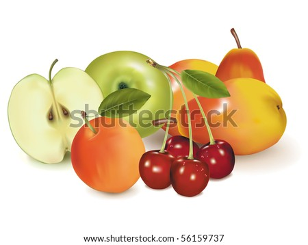 Photo-realistic vector illustration. Big group of ripe fruit. - stock vector