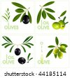 Photo-realistic vector illustration. Green olives with leaves. - stock vector