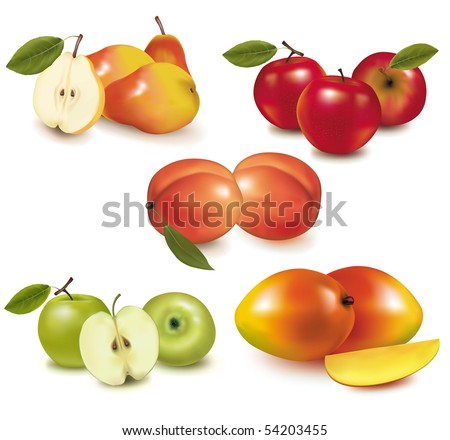 Photo-realistic vector illustration. Pears, apples, peaches and mango. - stock vector