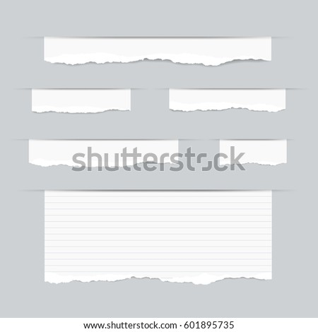 Ripped Lined Paper Texture