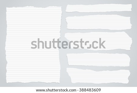 Pieces of torn white lined notebook paper on gray background - stock vector