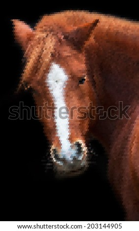 Piercing wisdom look back of a grace red horse with white stripe on the face, isolated on black background. Beautiful mare, looking straight into the camera. Amazing and unusual scaly vector image.  - stock vector