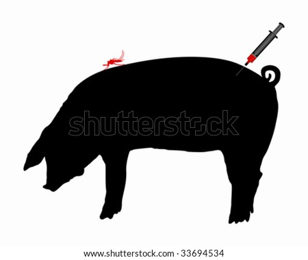 Pig gets an immunization against diseases of midge bites - stock vector