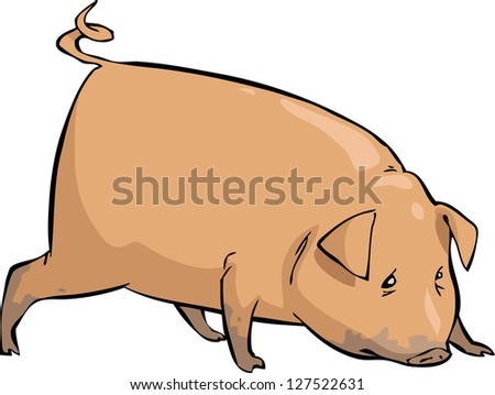 Pig on a white background vector illustration