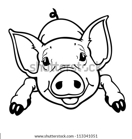 Baby pig Stock Photos, Images, & Pictures | Shutterstock