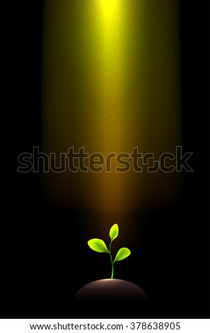 Pile of dirt and growing plant under shining light beams. Vector illustration. - stock vector