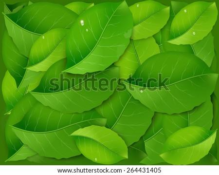 pile of green fresh realistic leaves, freshness, vector, vivid green. - stock vector