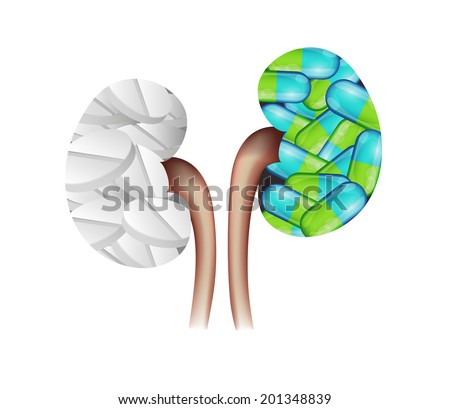 Pills kidneys shape. Colorful capsules and white pills in the kidneys. Kidney treatment concept. - stock vector