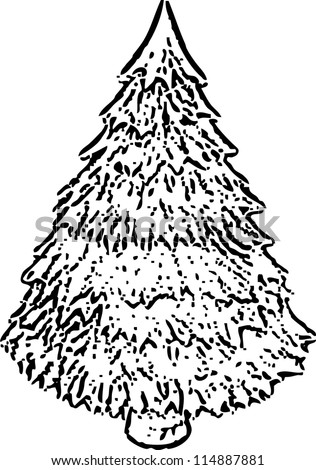 Pine christmas tree sketch vector illustration