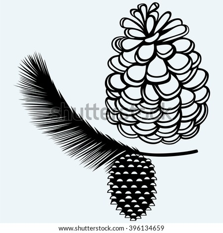 Pine strobile. Isolated on blue background. Vector silhouettes - stock vector