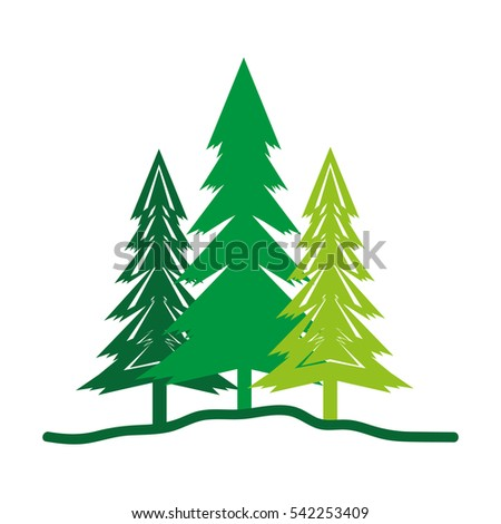 Pine Tree Isolated Stock Vector 496453420 - Shutterstock