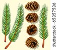 Pine Tree Branches and Cones. Vector Illustration - stock vector
