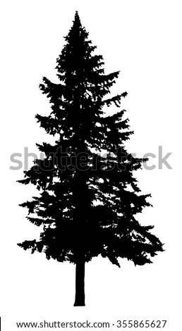 pine tree silhouette isolated on white stock photo photo vector rh shutterstock com vector pine tree images vector pine tree outline