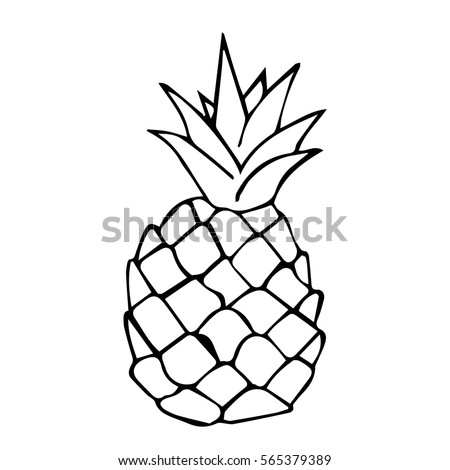 Pineapple Symbol Stock Images Royalty Free Images