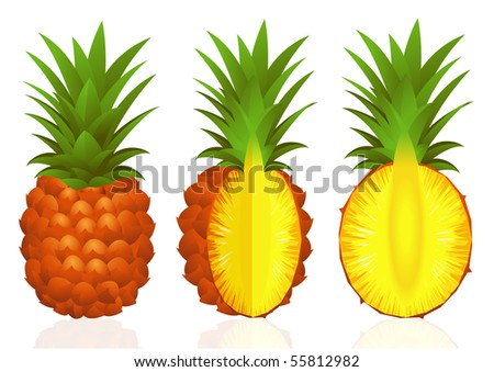 Pineapples, vector illustration - stock vector
