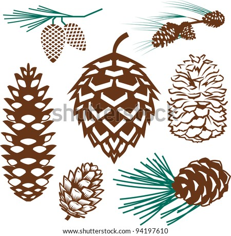 Pinecone Collection - stock vector