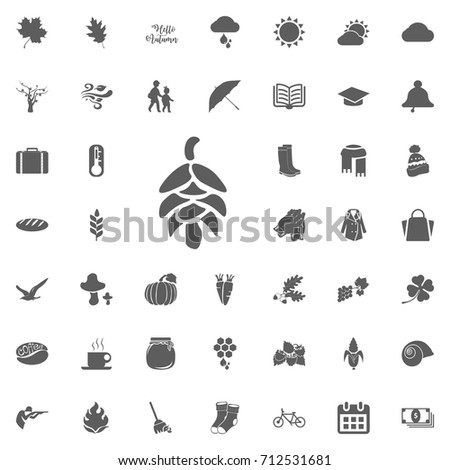 pinecone stock images royaltyfree images amp vectors