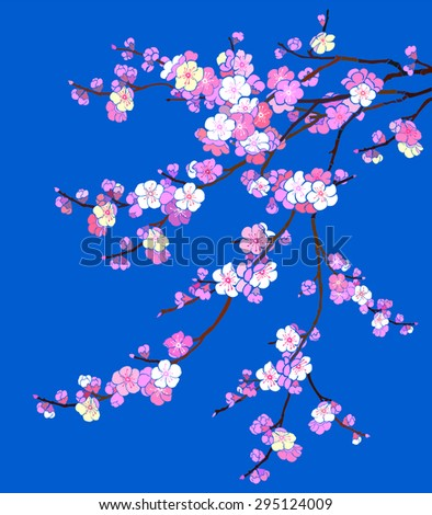 Pink Cherry blossom, sakura flowers isolated on blue background. Vector Illustration - stock vector
