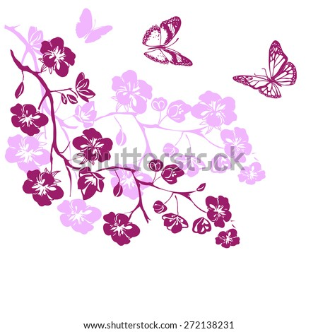 pink cherry blossoms branch and butterflies are on white background. Vector illustration - stock vector