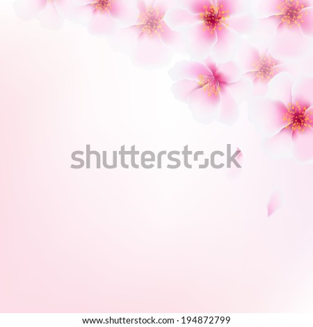 Pink Cherry Flowers, With Gradient Mesh, Vector Illustration - stock vector