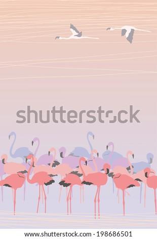 Pink Flamingos - stock vector