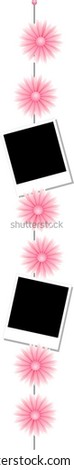pink flowers composition with instant photos - stock vector