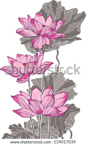 Pink lotus on white background - stock vector