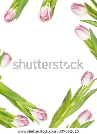 Pink tulips on white background. Spring - poster layout design with free text space. EPS 10 vector file included - stock vector