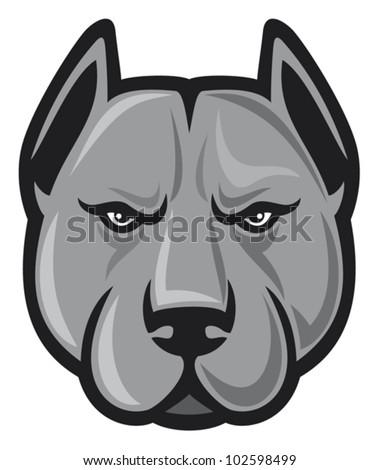 pit bull head (pit bull terrier) - stock vector