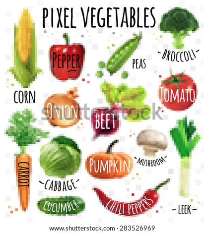 Pixel vegetables corn, pepper, peas, broccoli, onion, beet, mushrooms, tomato, pumpkin, cabbage, cucumber, carrot, chili pepper, leek drawing in pixel style on  white background - stock vector