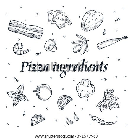 pizza ingredients set of hand drawn icons. Vector isolated on white background