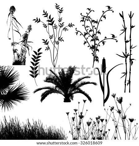Plant collection silhouette for designers on white background, vector illustration - stock vector