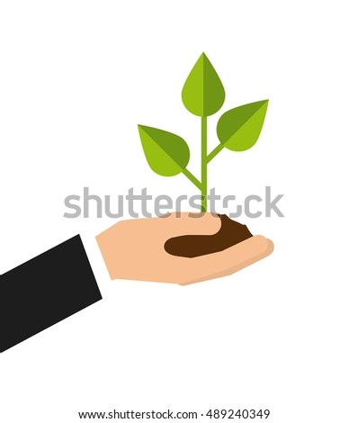 plant growth leafs icon vector illustration design