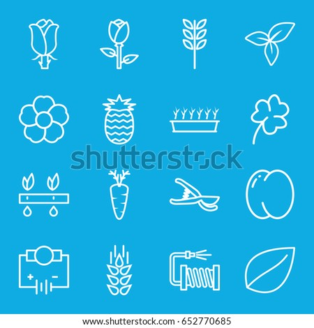 Plant icons set. set of 16 plant outline icons such as wheat, peach, rose, leaf, clover, garden tools, water hose, flower, carrot, pineapple