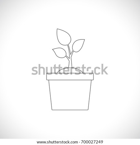 plant in pot outline icon