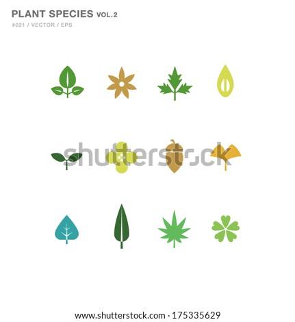 Plant Species Design 02 - stock vector