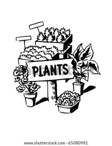 Plants - Ad Header - Retro Clipart - stock vector