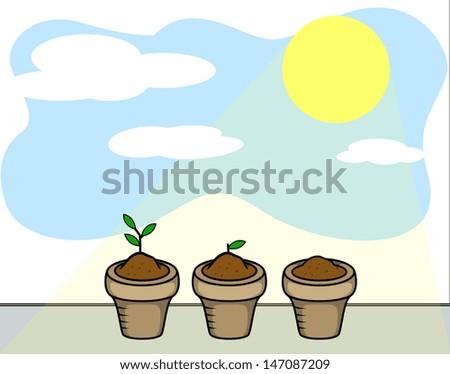 Plants and Sun Light - stock vector