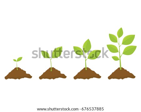 Growing Stock Images, Royalty-Free Images & Vectors