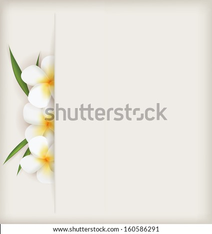 Plumeria flowers with leaves on light background - stock vector
