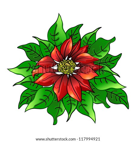 Poinsettia - stock vector